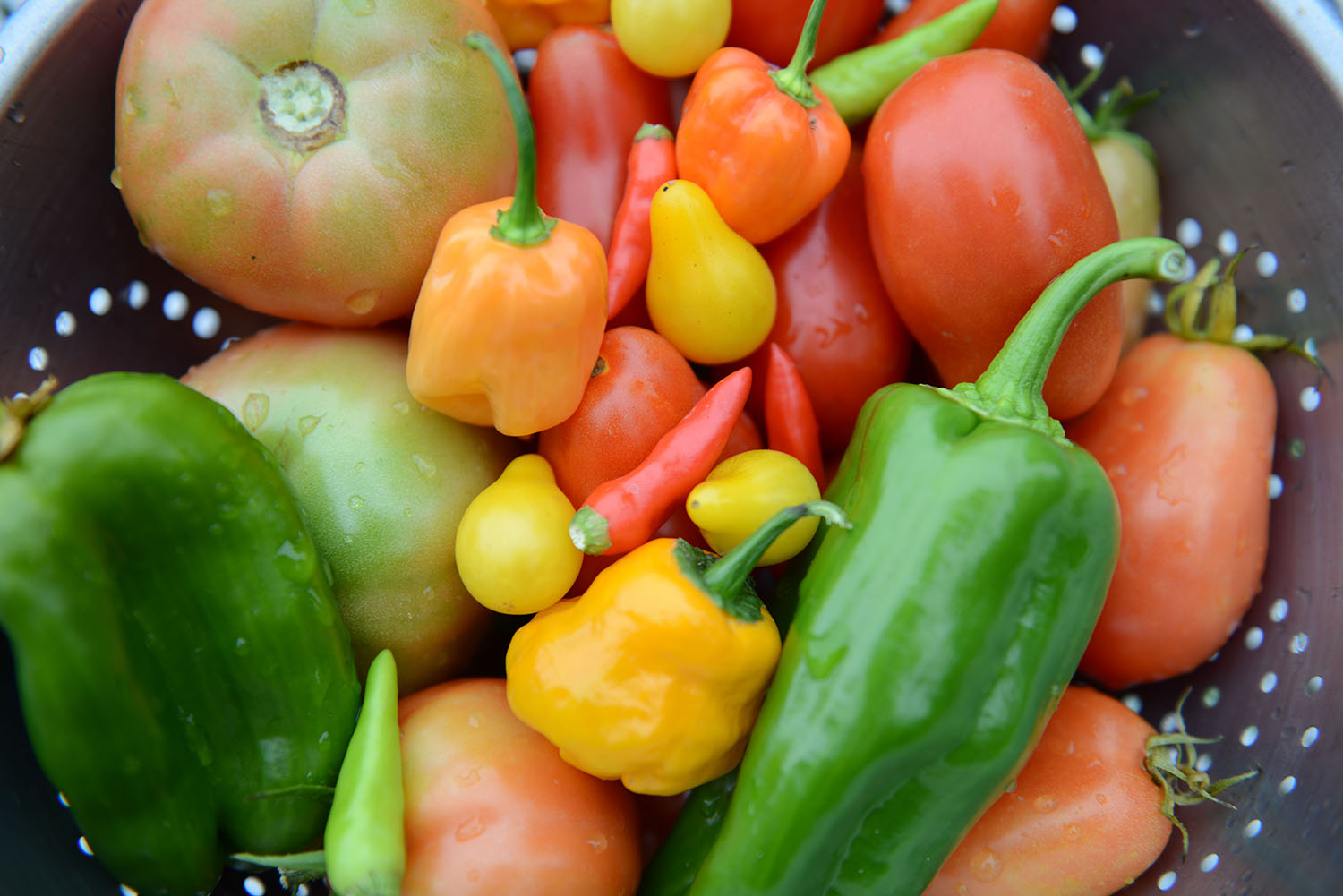 peppers in colander